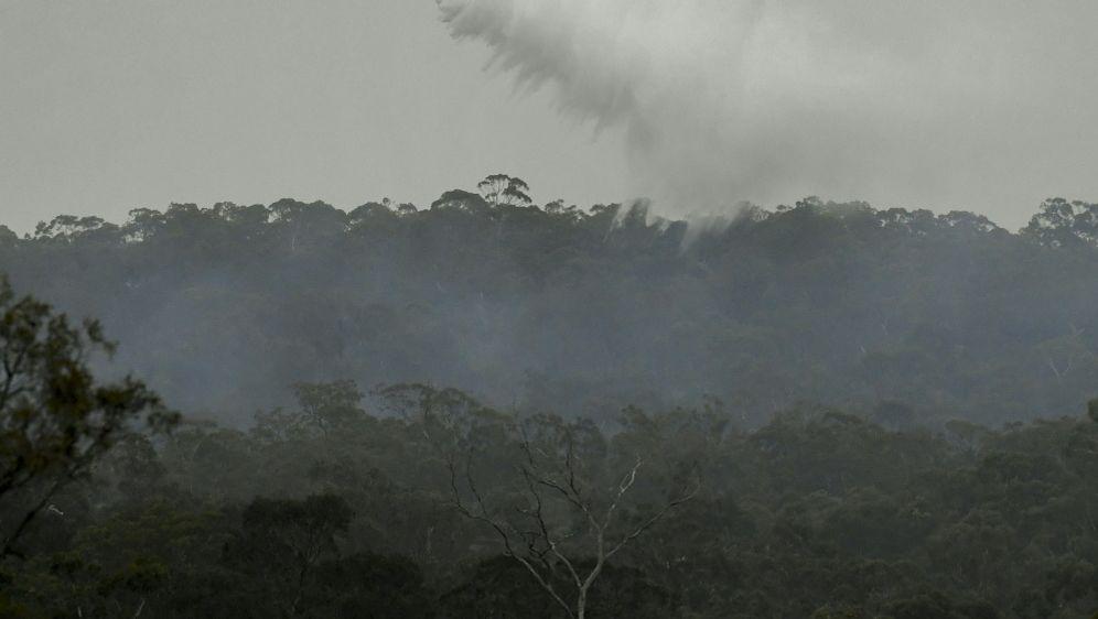 Seit Wochen ist Australien von Buschbränden betroffen - Bildquelle: AFPSIDWILLIAM WEST