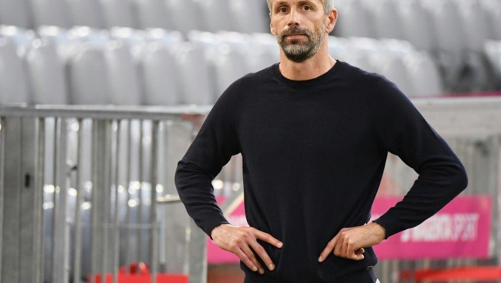 Gilt als der erotischste Bundesliga-Trainer: Marco Rose - Bildquelle: AFPSIDMATHIAS BALK