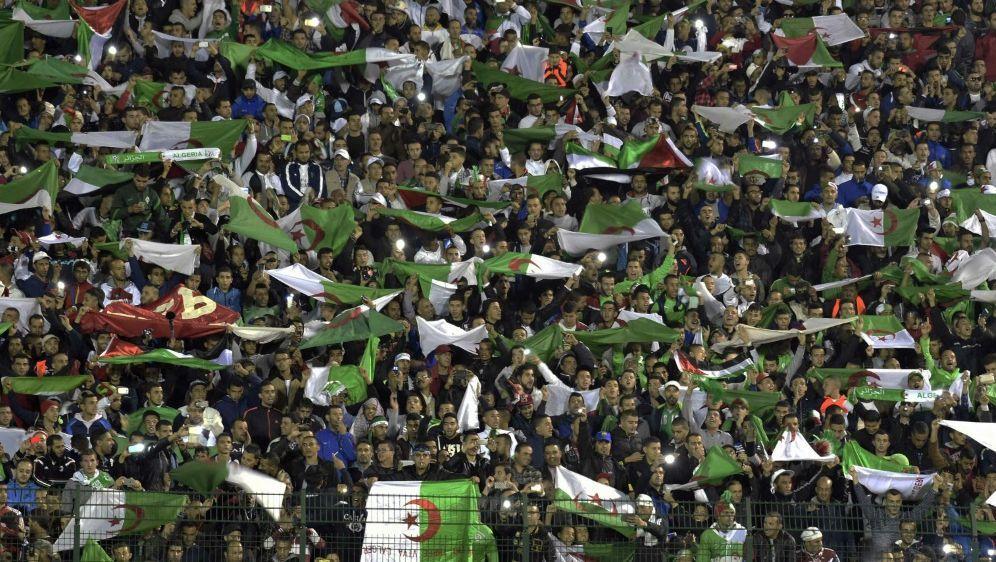 Im algerischen Fußball kommt es immer wieder zu Randalen - Bildquelle: AFPSIDFAROUK BATICHE