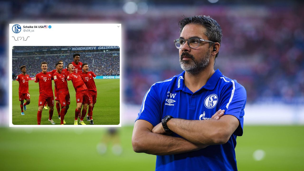 Nach Handspiel-Aufreger: FC Schalke 04 trollt FC Bayern  - Bildquelle: imago/https://twitter.com/s04_us