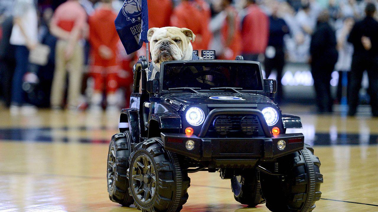 Jack the Bulldog (Georgetown Hoyas) - Bildquelle: imago/ZUMA Press