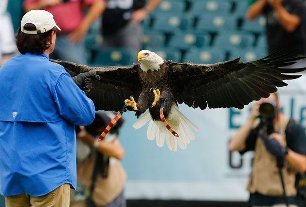 Philadelphia Eagles - Washington Redskins 37:34 - Bildquelle: getty