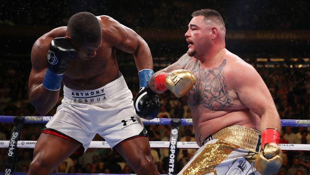 Im Juni schockte Andy Ruiz jr. die Boxwelt mit einem TKO-Sieg gegen Titelver... - Bildquelle: 2019 Getty Images