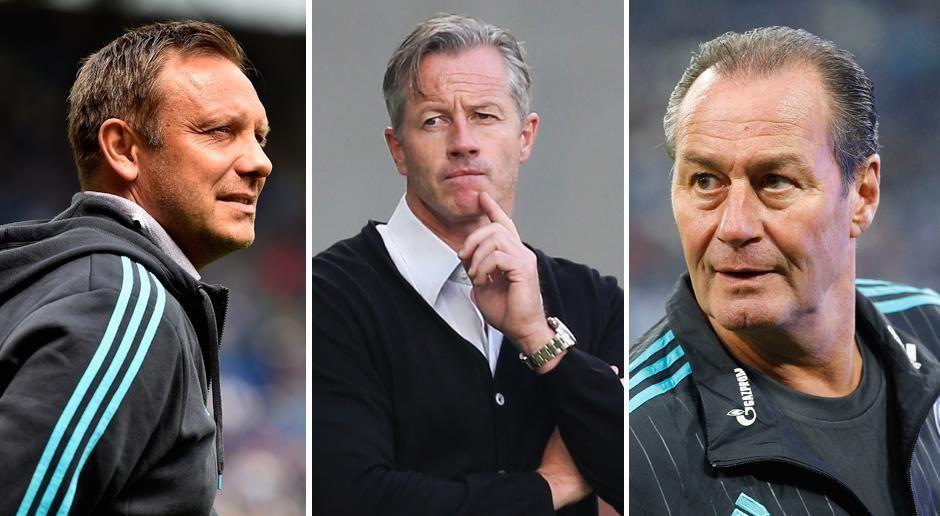 Fünf Trainer auf Schalke - Bildquelle: getty images
