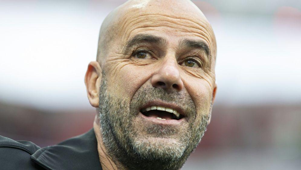 Bosz und Bayer müssen am Sonntag gegen Augsburg ran - Bildquelle: FIROFIROSID