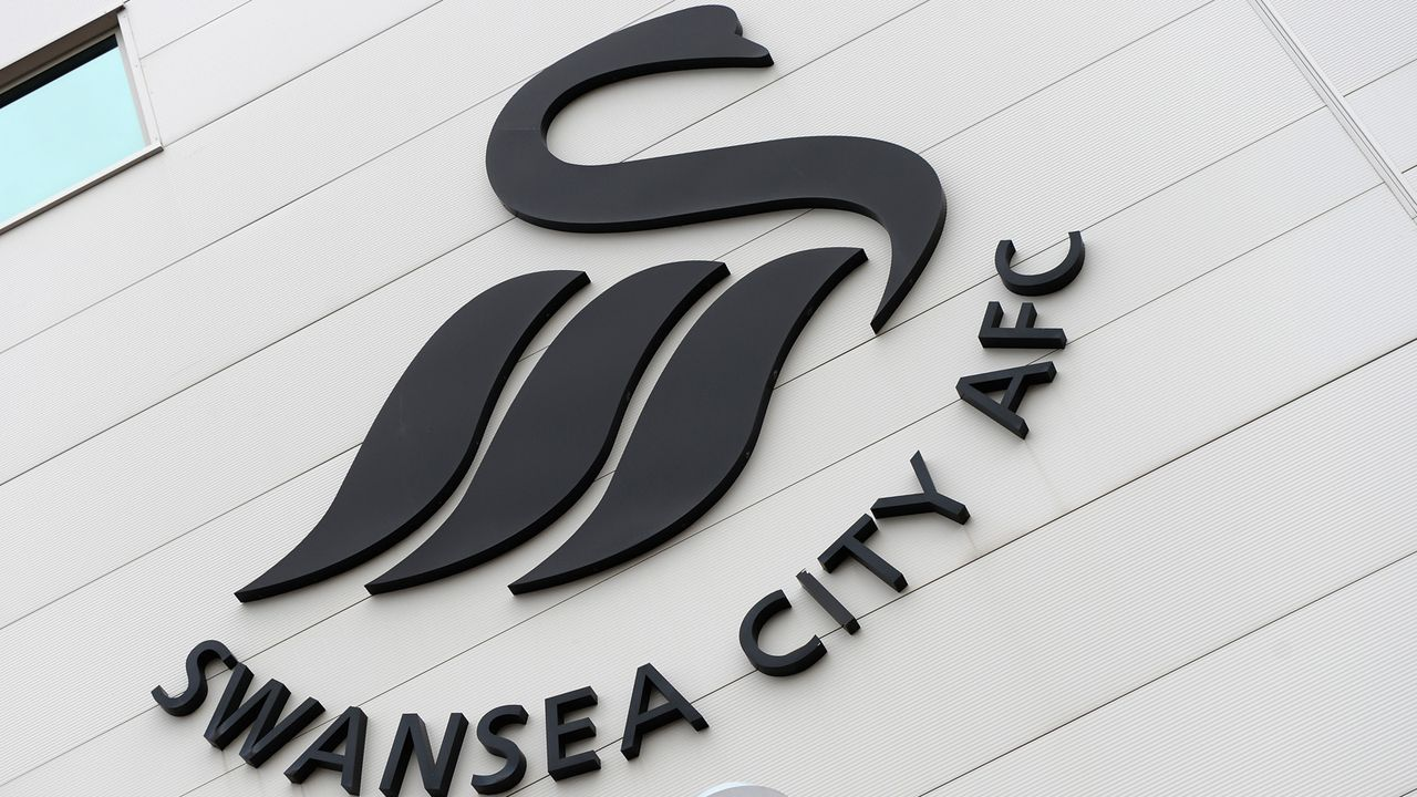 Swansea City - Bildquelle: 2015 Getty Images