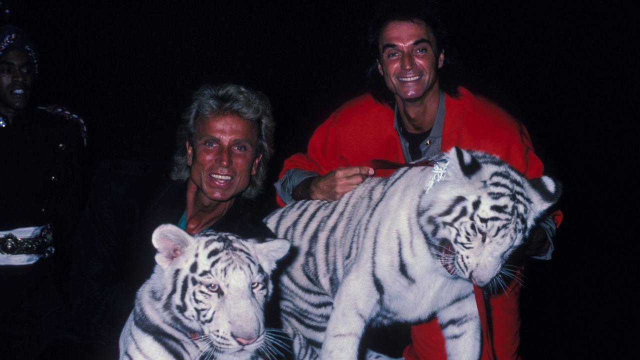 Roy Horn wird von einem seiner Tiger angegriffen - Bildquelle: Imago