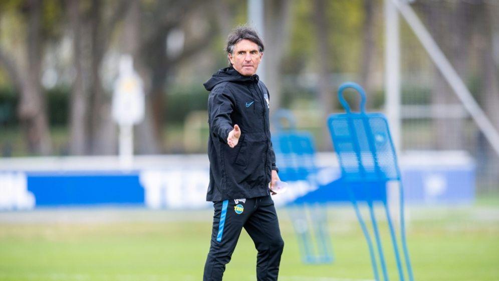 """Bruno Labbadia: """"Gucken nach jungen Spielern"""" - Bildquelle: FIROFIROSID"""