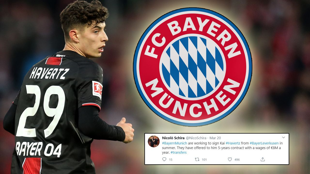 Kai Havertz (Bayer Leverkusen) - Bildquelle: getty