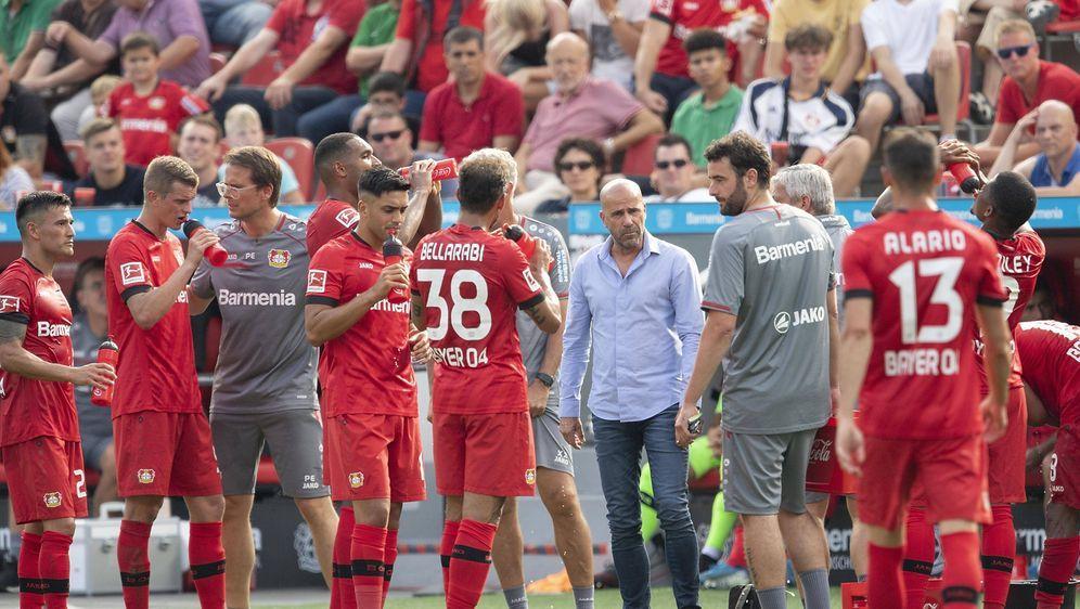 Bayer Leverkusen spielt nach vier Jahren wieder in der Champions League. - Bildquelle: imago