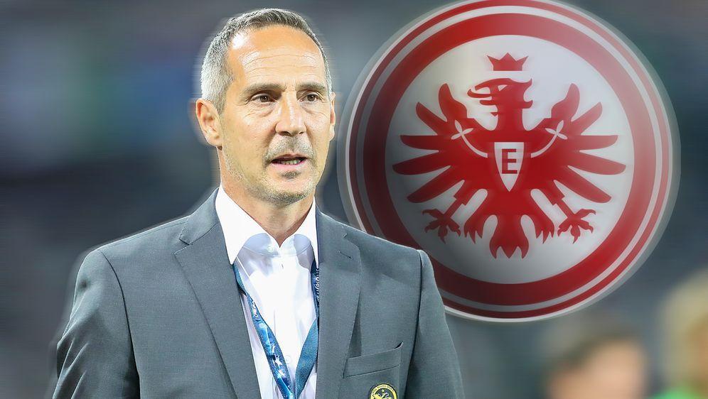 Frankfurt Neuer Trainer