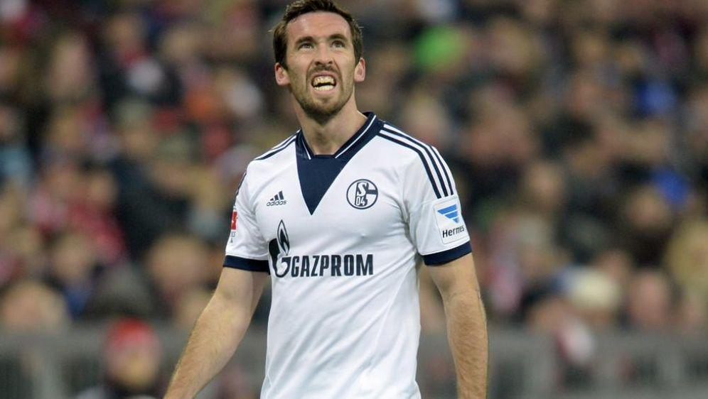 Fuchs Schalke