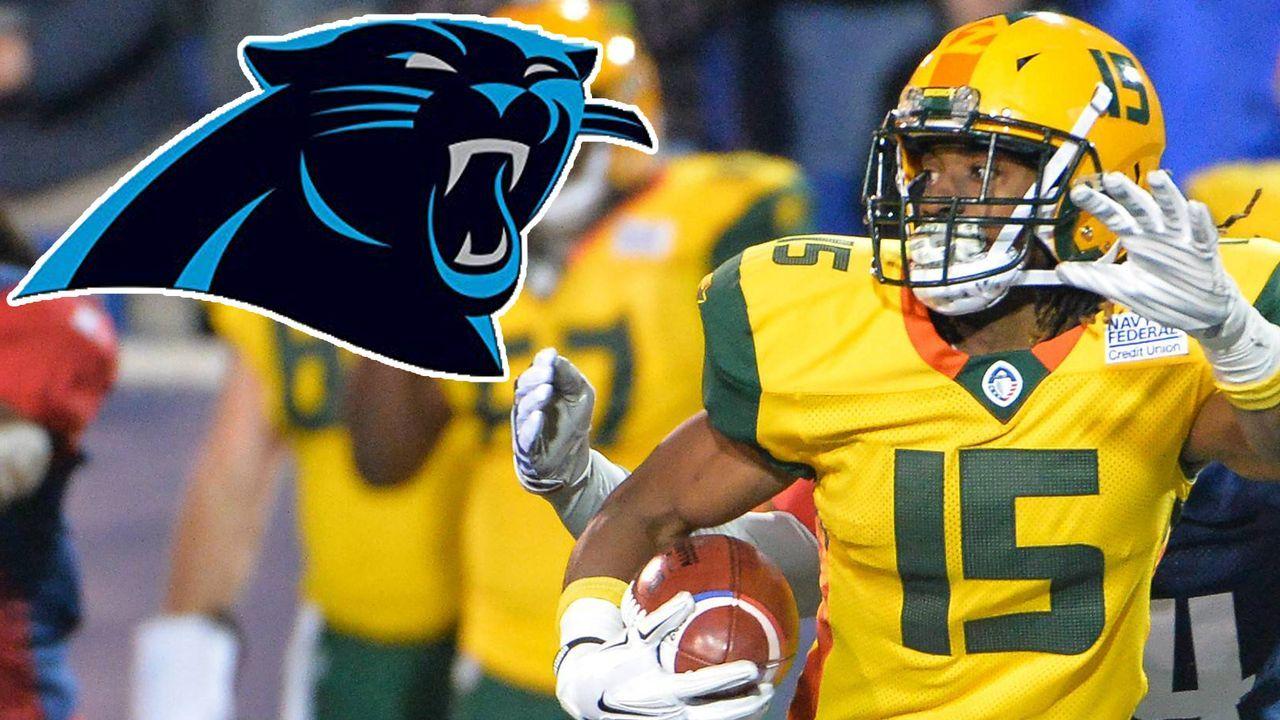 Carolina Panthers - Bildquelle: imago
