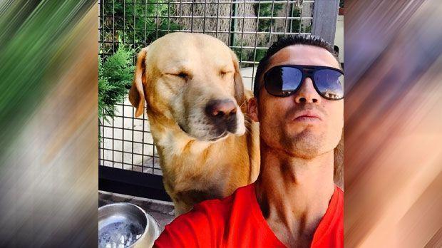 Hundeliebhaber: Cristiano Ronaldo - Bildquelle: Instagram/cristiano