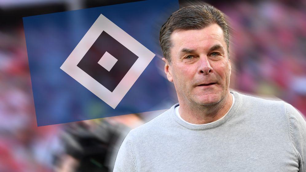 Neuer Trainer des Hamburger SV: Dieter Hecking soll den Zweitligisten zurück... - Bildquelle: Getty Images