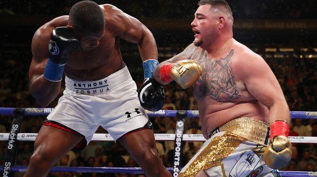 Weltrangliste Boxen Schwergewicht