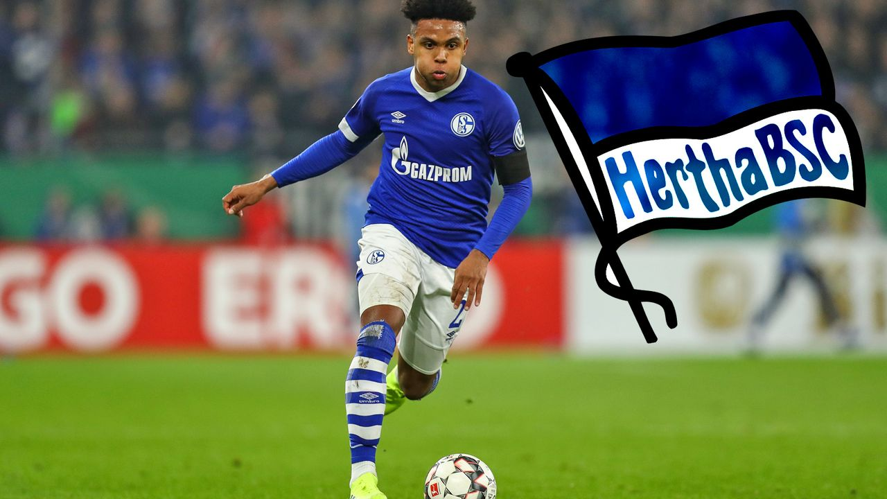 Weston McKennie (FC Schalke 04) - Bildquelle: getty