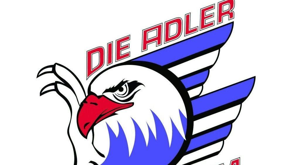 Die Adler Mannheim verlieren bei den Straubing Tigers - Bildquelle: DELDELDEL
