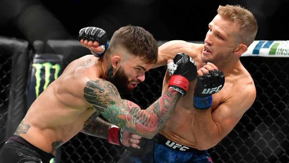 TJ Dillashaw (re.) im Duell mit seinem Erzrivalen Cody Garbrandt - Bildquelle: imago sportfoto