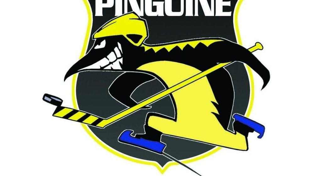 Zukunft der Krefeld Pinguine weiter ungewiss - Bildquelle: DELDELDEL