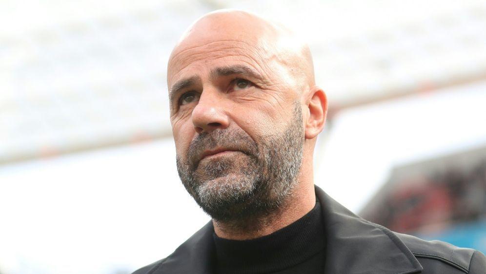 Will mit Leverkusen in die Champions League: Peter Bosz - Bildquelle: FIROFIROSID