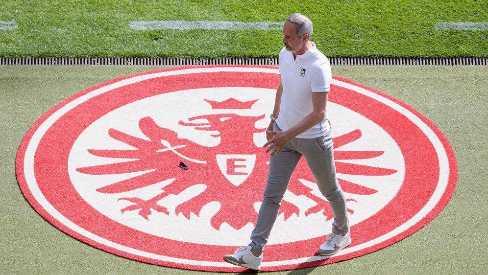 Adi Hütter wechselt zum Saisonende zu Borussia Mönchengladbach - Bildquelle: 2021 imago