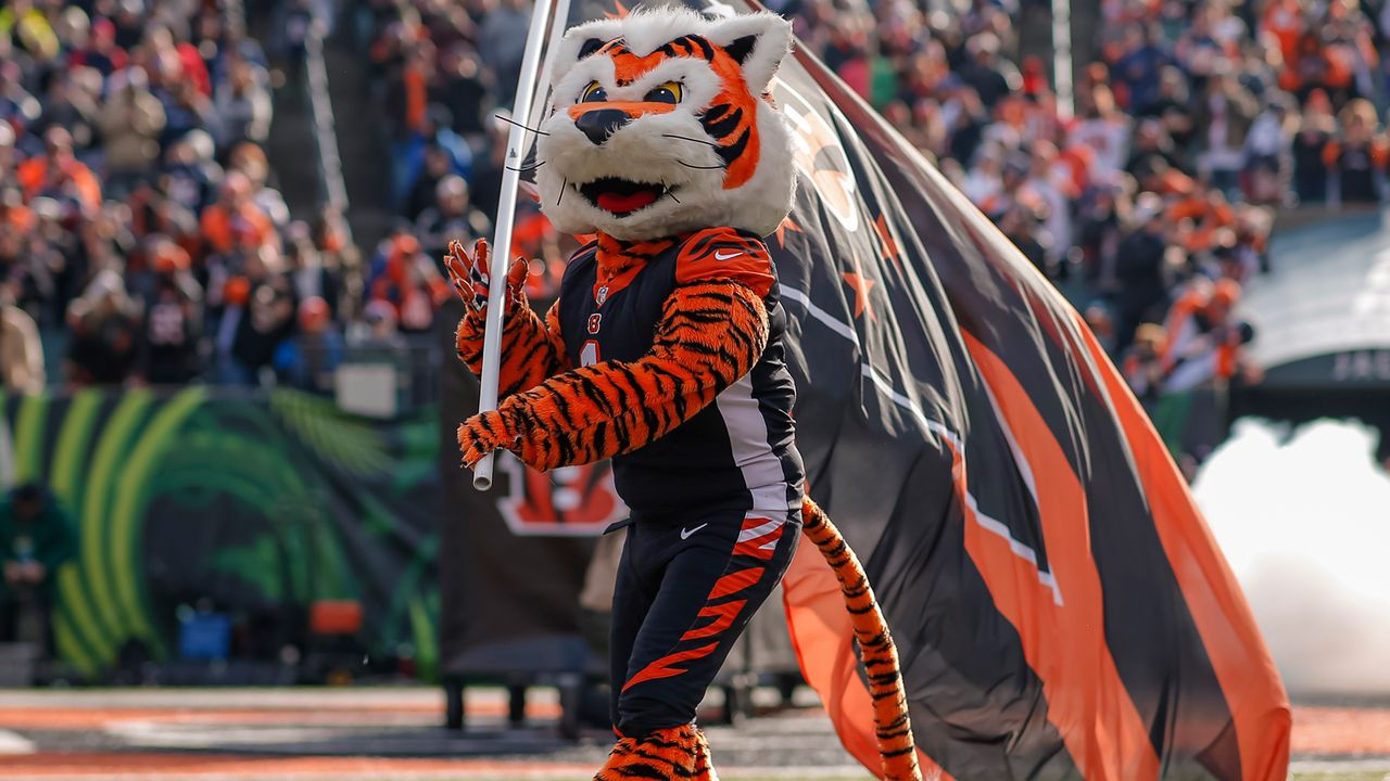 30. Platz: Cincinnati Bengals - Bildquelle: 2019 Michael Hickey